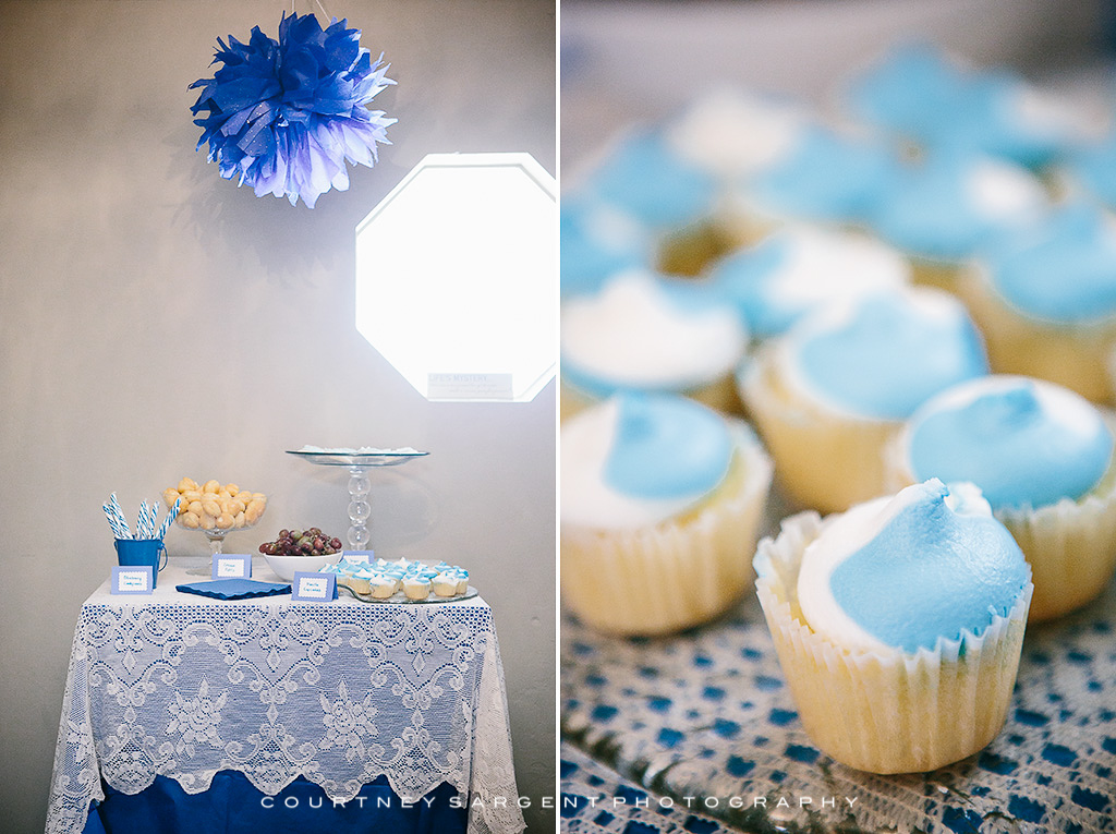 Lacey S Diy Blue Whale Themed Baby Sprinkle Courtney