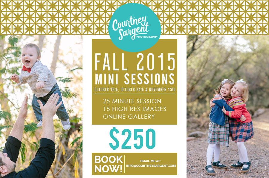 2015 Fall Mini Sessions!