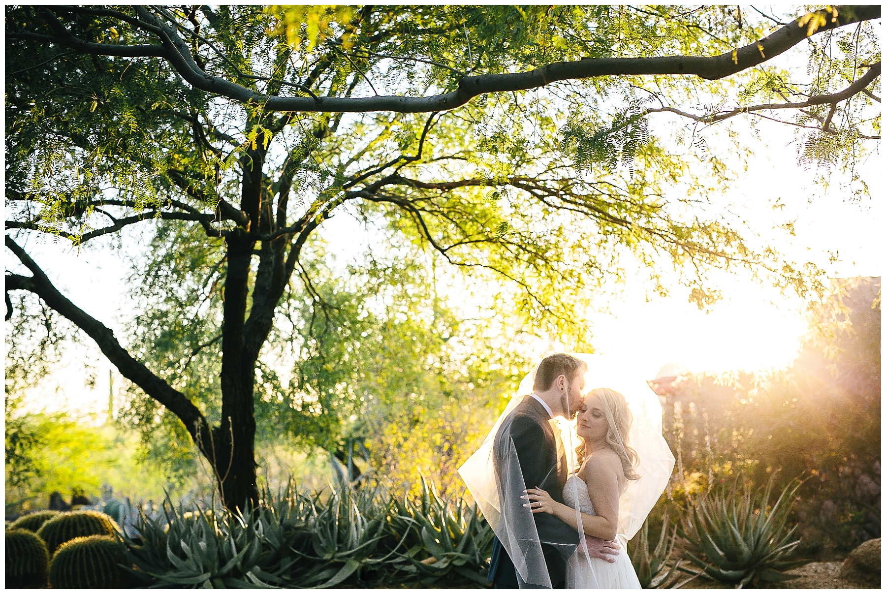 Phoenix Wedding Photographer, Desert Wedding, Phoenix Wedding  Photojournalist