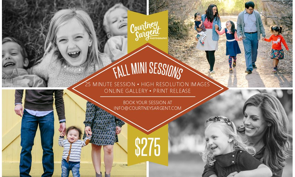 Book Your 2016 Fall Mini Session!