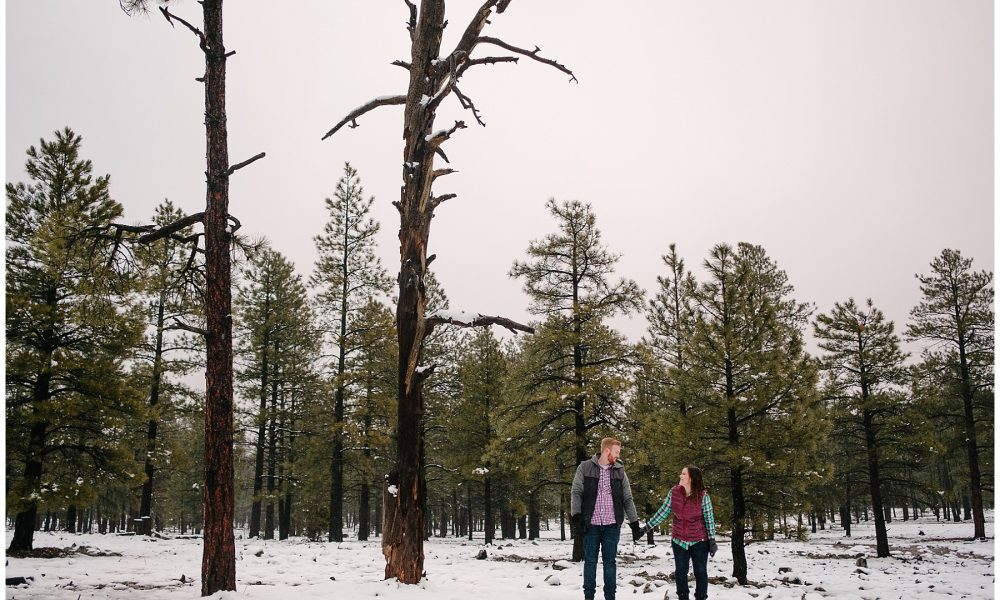 Becca & David's Snowy Flagstaff Brewery Engagement Session